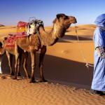 Viaggi in Nord Africa: Assuan